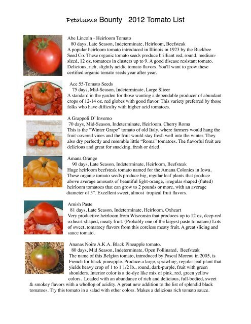 HEIRLOOM Sweet and flavorful! 30 SEEDS TOMATO PURPLE RUSSIAN