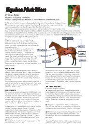 Equine Nutrition By Peter Bollen - Horse Times