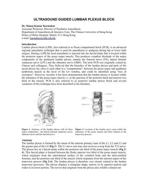 Ultrasound Guided Lumbar Plexus Block Usra