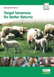 Target Lameness for Better Returns - Eblex