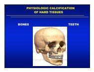 PHYSIOLOGIC CALCIFICATION OF HARD TISSUES BONES TEETH