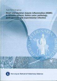 Heart and skeletal muscle inflammation (HSMI) in Atlantic salmon