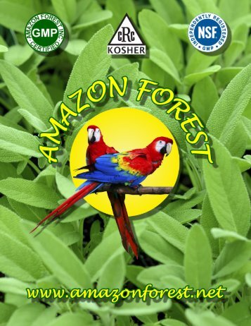 Mission Statement - Amazon Forest