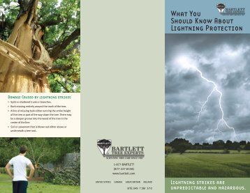 What You Should Know About Lightning Protection - Bartlett Tree ...