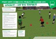 cricket - hit the target - School Games