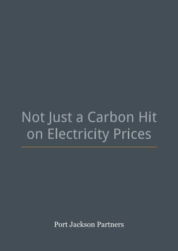 Not Just A Carbon Hit On Electricity Prices - Port Jackson Partners