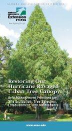 Restoring Our Hurricane-Ravaged Urban Tree Canopy: - Alabama ...