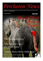 to view the newsletter - Percheron Horse Breeders Association of ...