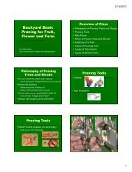 Backyard Basic Pruning for Fruit, Flower and Form - Oregon State ...