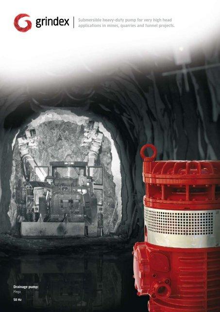 Submersible heavy-duty pump for very high head ... - Euroflo