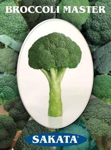 Broccoli Master - Sakata Vegetables