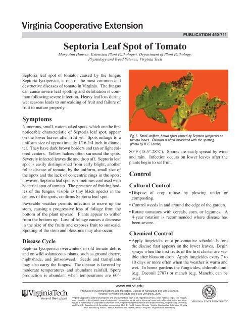 Septoria Leaf Spot of Tomato - Virginia Tech