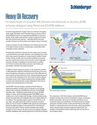 Heavy Oil Recovery Product Sheet - Schlumberger