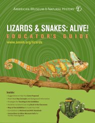 lizards & snakes: alive! - California Academy of Sciences