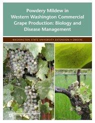 Powdery Mildew in Western Washington Commercial Grape ...