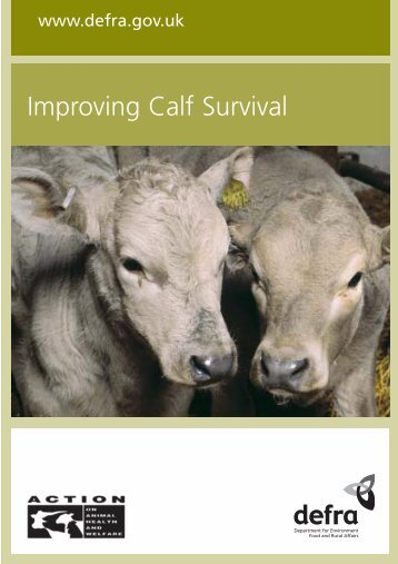 Improving calf survival - Defra