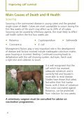 Improving calf survival - Defra - Page 4