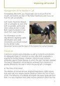 Improving calf survival - Defra - Page 7