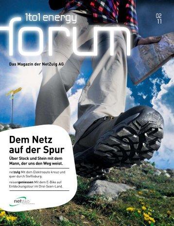 Energy Forum 2/11 - NetZulg AG