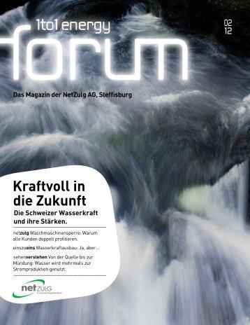 Energy Forum - NetZulg AG
