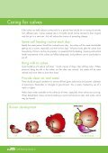 Calf Rearing Guide - NRM - Page 6