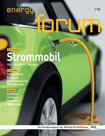 Energy Forum 1/09 - NetZulg AG