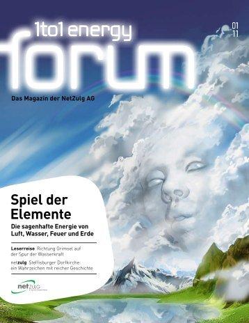 Energy Forum 1/11 - NetZulg AG