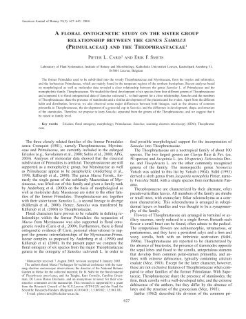 (primulaceae) and the theophrastaceae1 - American Journal of Botany