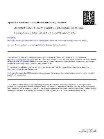 Apomixis in Amelanchier laevis, Shadbush (Rosaceae, Maloideae ...