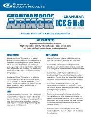 Guardian Roof Armor Granular Ice and Water Spec
