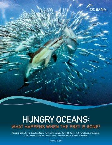 Hungry Oceans (PDF) - Oceana