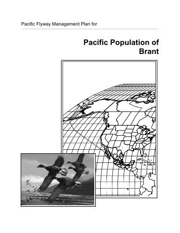Pacific Population of Brant - Pacific Flyway Council
