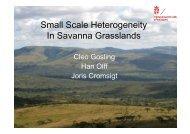 Small Scale Heterogeneity In Savanna Grasslands - SANParks