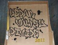 2011 - The Cedar Valley Divide