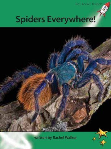 Spiders Everywhere! - Red Rocket Readers