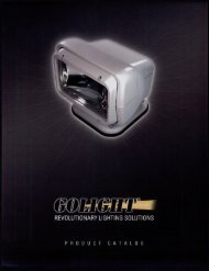 Downloadable GoLight Product Catalog