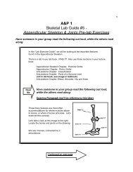 A&P 1 Skeletal Lab Guide #5 - Appendicular Skeleton & Joints Pre ...