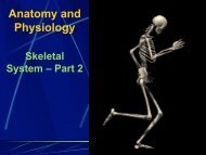 Skeletal System Part 2