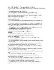 BIO 354F Handout – The Appendicular Skeleton
