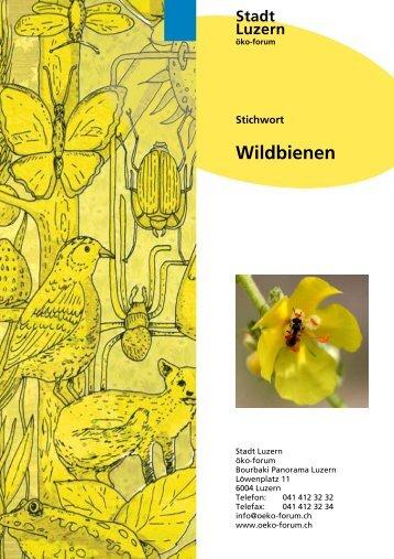 Nisthilfen für Wildbienen - öko-forum Umweltberatung Luzern