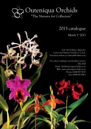 Catalogue - Outeniqua Orchids