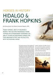 HIDALGO & FRANK HOPKINS HORSES IN HISTORY ... - Horse Times