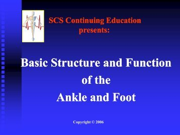Basic Structure and Function of the Ankle and Foot - Home