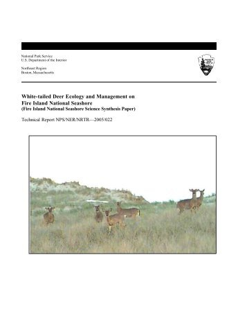 White-tailed Deer Ecology and Management on Fire Island National ...