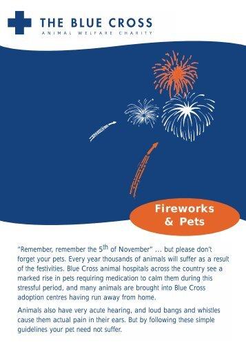 R2035-Firework Leaflet