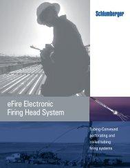 eFire Electronic Firing Head System - Schlumberger