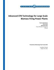 Advanced CFB Technology for Large Scale Biomass Firing Power ...