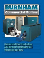 Commercial Cast Iron Boilers & Commercial Stainless Steel ...