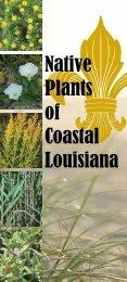 Native Plants of Coastal Louisiana - Bayou Land RC&D