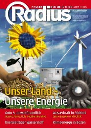 Radius Energie 2010